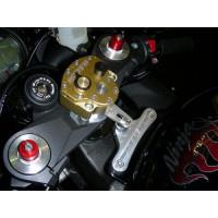 08-10 Kawasaki ZX-10R...