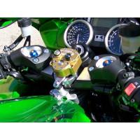 06-15 Kawasaki ZX-14 Scotts...