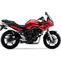07-09 Yamaha FZ-6 Scorpion Motorcycle Exhaust