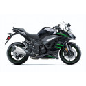 Kawasaki Ninja 1000SX